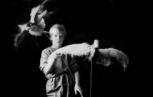 Magnus og fugler